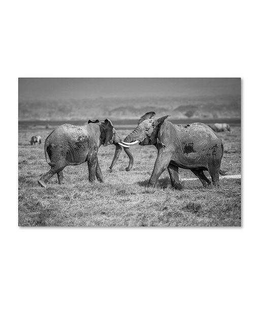 """Trademark Global Jeffrey C Sink 'Sumo In The Natural World' Canvas Art - 24"""" x 16"""" x 2"""""""