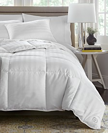 Stearns & Foster PrimaCool Comforter Collection