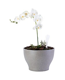 Eco Self-Watering Modern Flower Pot Planter
