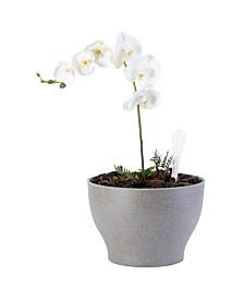 Bloem Eco Self-Watering Modern Flower Pot Planter