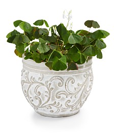 Home Essentials La Dolce Vita Embossed Planter