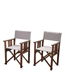 2 Piece Patio Dining Chair Set