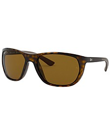 Polarized Sunglasses, RB4307 61