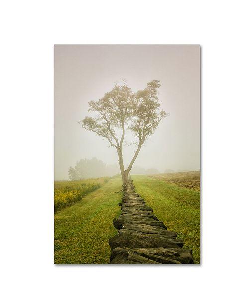 "Trademark Global PIPA Fine Art 'Calming Morning' Canvas Art - 12"" x 19"""