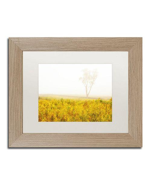 "Trademark Global PIPA Fine Art 'Dreams of Goldenrod and Fog' Matted Framed Art - 11"" x 14"""