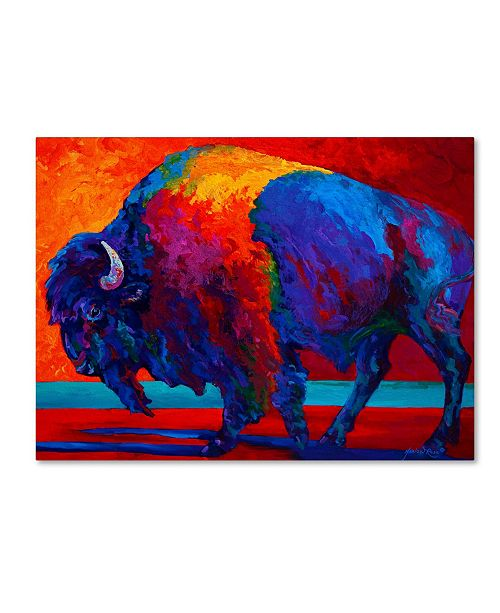 "Trademark Global Marion Rose 'Abstract Bison' Canvas Art - 14"" x 19"""