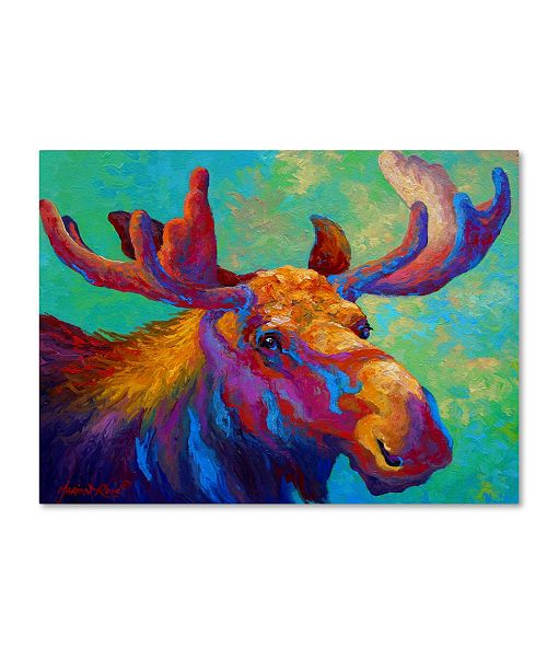 """Trademark Global Marion Rose 'Velvet Shadows' Canvas Art - 14"""" x 19"""""""