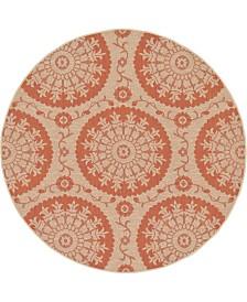 Bridgeport Home Pashio Pas5 Terracotta 6' x 6' Round Area Rug