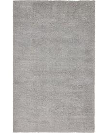 Salon Solid Shag Sss1 Light Gray 5' x 8' Area Rug