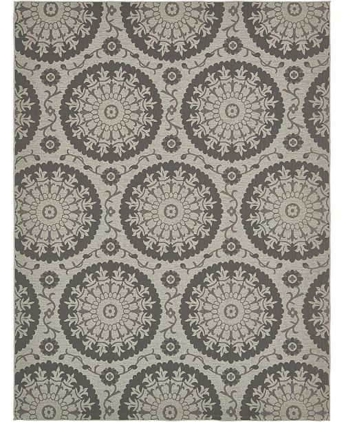 Bridgeport Home Pashio Pas5 Gray 9' x 12' Area Rug