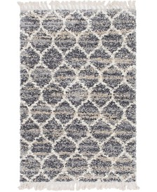 Bridgeport Home Lochcort Shag Loc1 Gray 4' x 6' Area Rug
