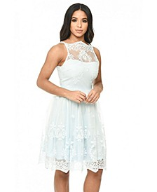 Lace Detail Dress with Full Skirt