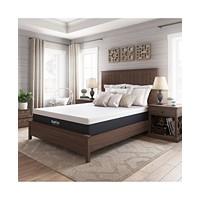 Sleep Trends Ladan 12-in Cool Gel Memory Foam Plush Mattress