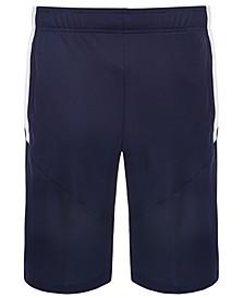 "Men's Colorblocked Logo 10"" Shorts"