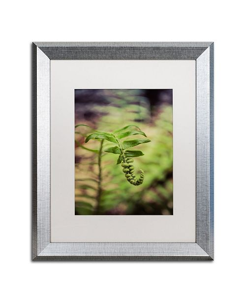 "Trademark Global PIPA Fine Art 'Growth of the Forest Floor' Matted Framed Art - 16"" x 20"""