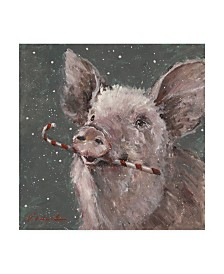 "Mary Miller Veazie 'Teri The Christmas Pig' Canvas Art - 18"" x 18"""