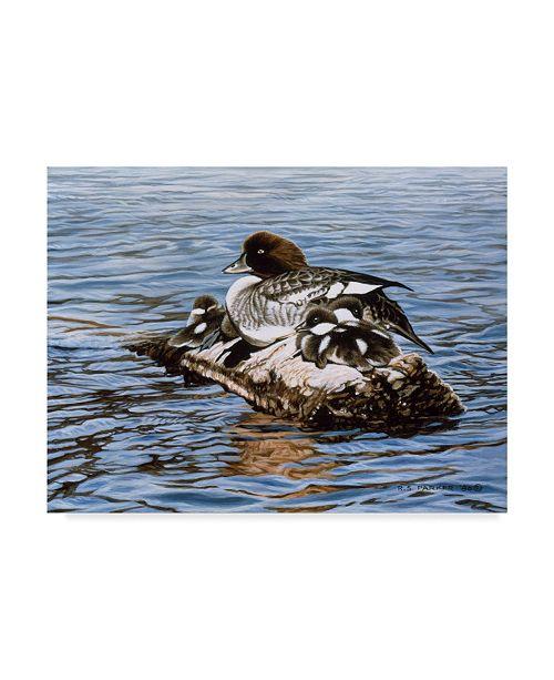 "Trademark Global Ron Parker 'Goldeneye And Ducklings' Canvas Art - 18"" x 24"""