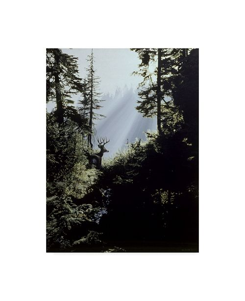 """Trademark Global Ron Parker 'Edge Of The Forest' Canvas Art - 18"""" x 24"""""""