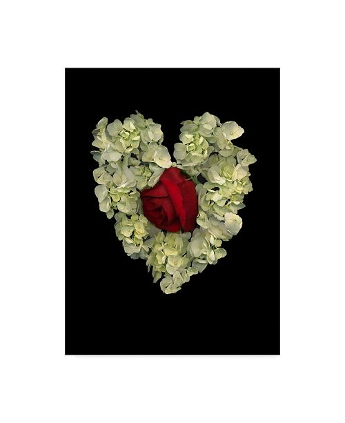 "Trademark Global Susan S. Barmon 'Heart And Flower' Canvas Art - 18"" x 24"""