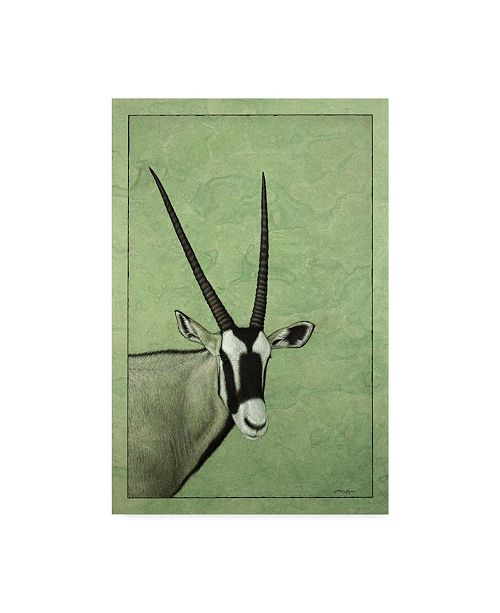 "Trademark Global James W. Johnson 'Gemsbok' Canvas Art - 12"" x 19"""