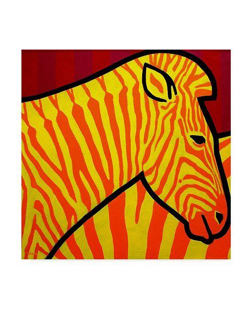 "Trademark Global John Nolan 'Cadmium Zebra' Canvas Art - 24"" x 24"""