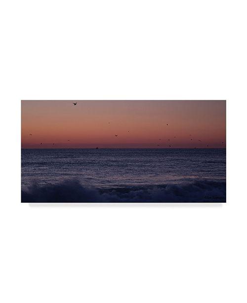"""Trademark Global Ian Tornquist 'Birds Over Ocean Grove' Canvas Art - 24"""" x 12"""""""