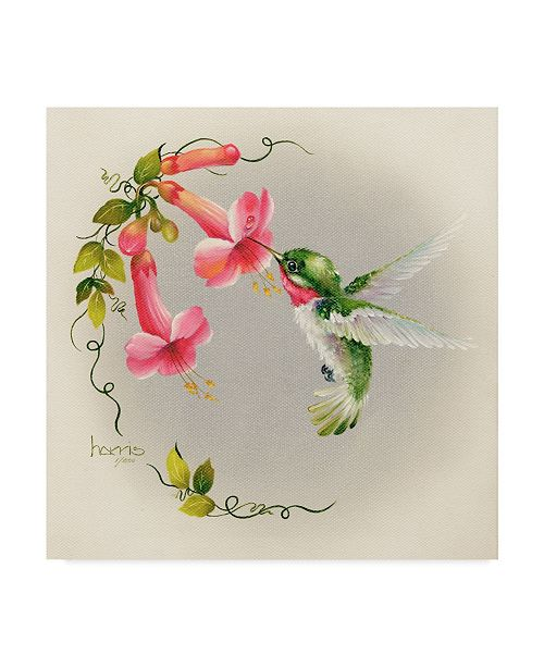 "Trademark Global Peggy Harris 'Hummingbirds With Trumpet Flowers' Canvas Art - 14"" x 14"""