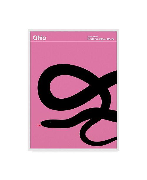 "Trademark Global Print Collection - Artist 'Ohio Snake' Canvas Art - 18"" x 24"""