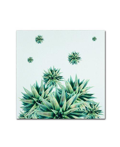 "Trademark Global Mark Ashkenazi 'Tropical Stars' Canvas Art - 35"" x 35"""