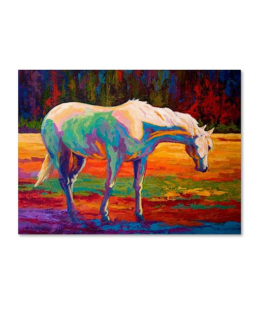 """Trademark Global Marion Rose 'White Mare II' Canvas Art - 24"""" x 32"""""""