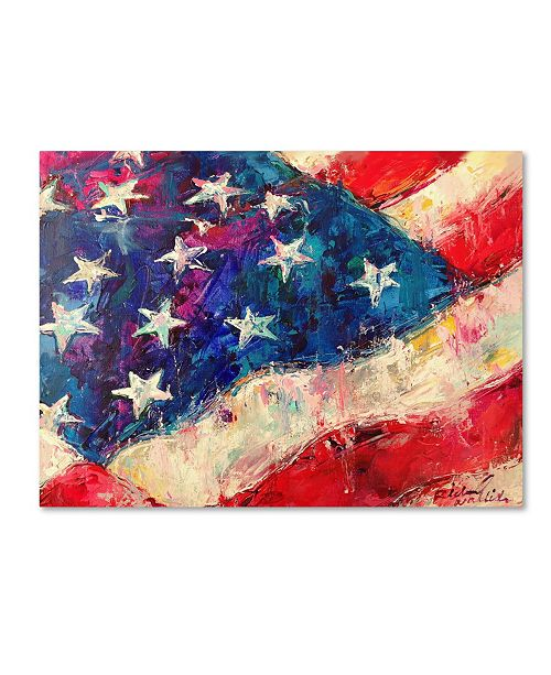 "Trademark Global Richard Wallich 'Art Flag' Canvas Art - 24"" x 32"""