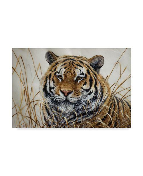 "Trademark Global Jeff Tift 'Tiger' Canvas Art - 22"" x 32"""