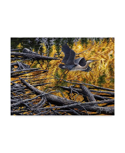 "Trademark Global Jeff Tift 'Heron' Canvas Art - 35"" x 47"""