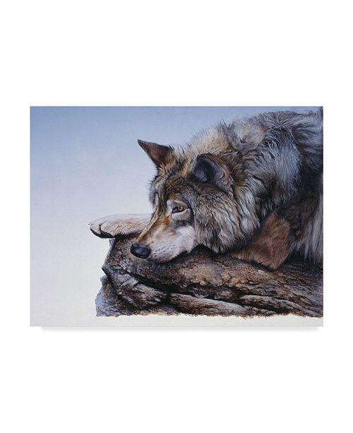"Trademark Global Rusty Frentner 'On The Edge' Canvas Art - 35"" x 47"""