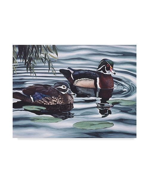 "Trademark Global Rusty Frentner 'Ducks And Lilies' Canvas Art - 35"" x 47"""