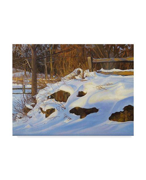 """Trademark Global Rusty Frentner 'Frentner Opa' Canvas Art - 35"""" x 47"""""""