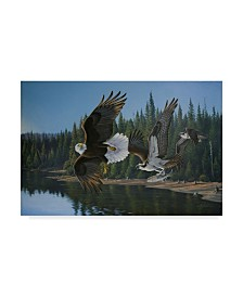 "Wilhelm Goebel 'Eagle Osprey' Canvas Art - 22"" x 32"""