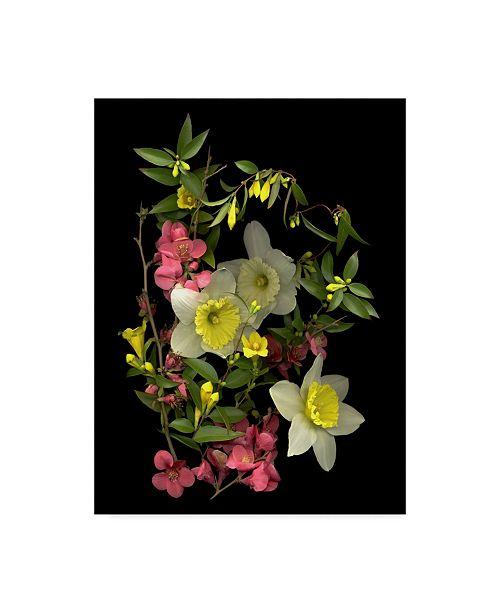 "Trademark Global Susan S. Barmon 'Early Spring' Canvas Art - 24"" x 32"""