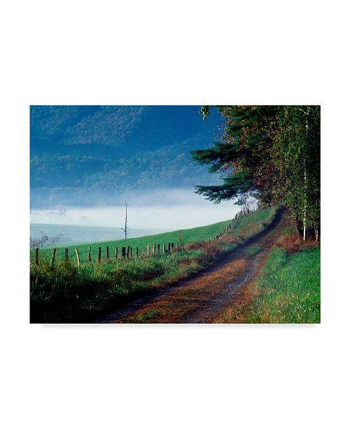 "Trademark Global J.D. Mcfarlan 'Hyatt Lane Path' Canvas Art - 32"" x 24"""