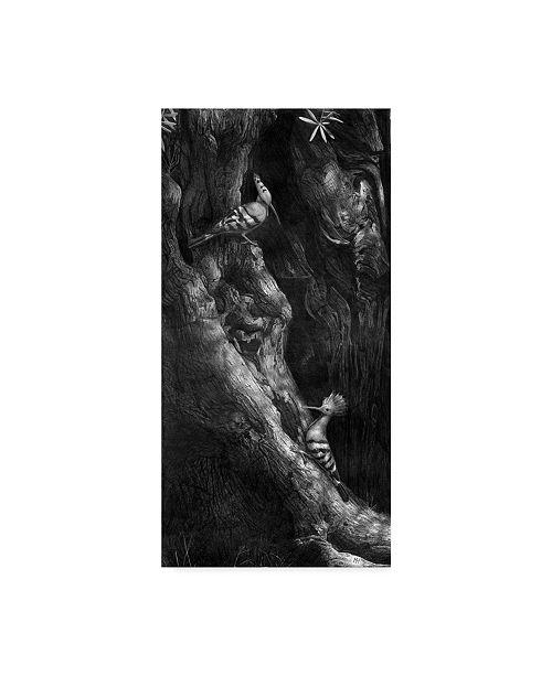 "Trademark Global Mike Hughes 'Hoopoes' Canvas Art - 24"" x 47"""