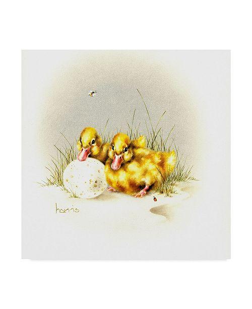 "Trademark Global Peggy Harris 'Ducks And Egg' Canvas Art - 24"" x 24"""