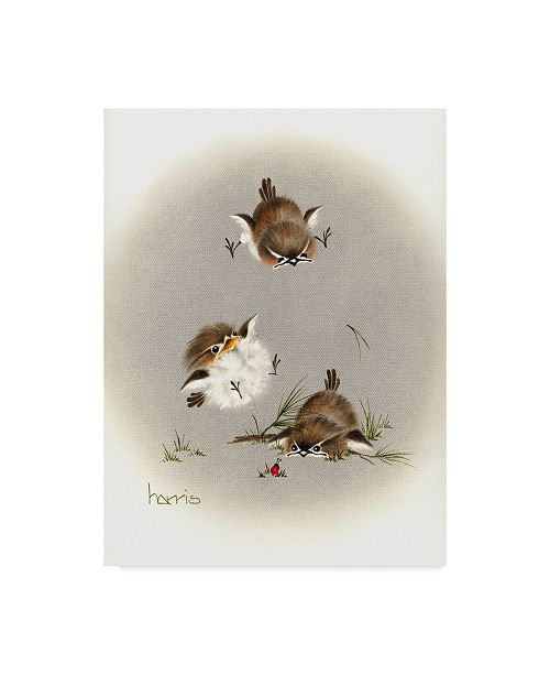 "Trademark Global Peggy Harris 'Grounded Small Birds' Canvas Art - 35"" x 47"""
