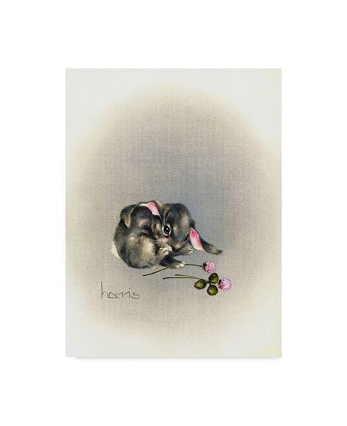 "Trademark Global Peggy Harris 'Ears Lookin At You Kid' Canvas Art - 35"" x 47"""