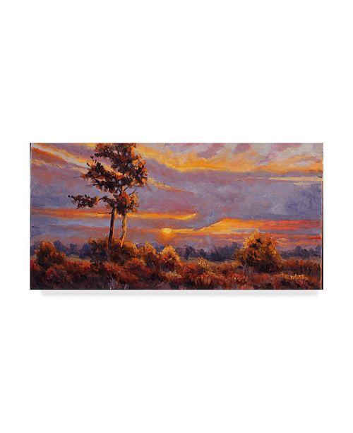 "Trademark Global Wanda Mumm 'African Sunset' Canvas Art - 47"" x 24"""
