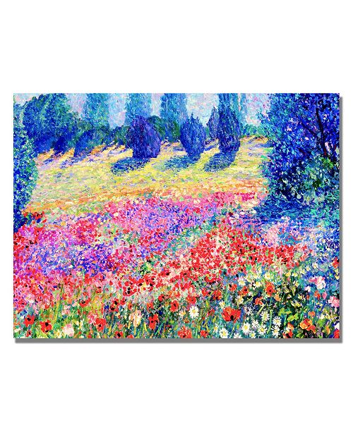 "Trademark Global Manor Shadian 'Poppies' Canvas Art - 24"" x 18"""