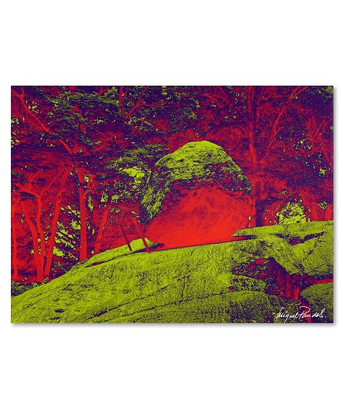 """Trademark Global Miguel Paredes 'Enchanged Rock I' Canvas Art - 32"""" x 24"""""""