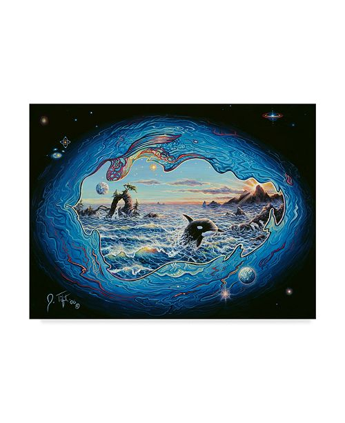 "Trademark Global Jeff Tift 'Whales' Canvas Art - 14"" x 19"""