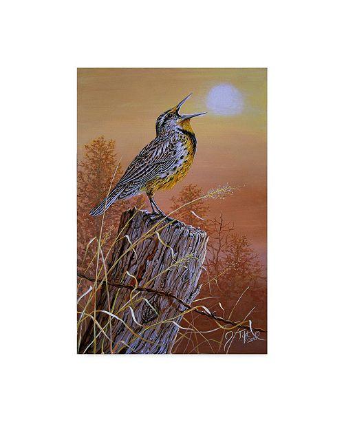 "Trademark Global Jeff Tift 'Meadowlark Painting' Canvas Art - 12"" x 19"""
