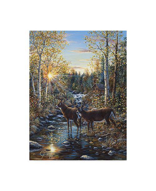 "Trademark Global Jeff Tift 'Whitetail Deer' Canvas Art - 14"" x 19"""