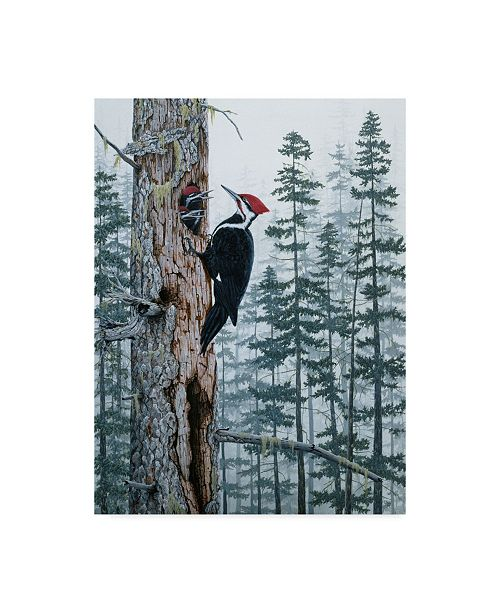 "Trademark Global Jeff Tift 'Piliated Woodpeckers' Canvas Art - 14"" x 19"""